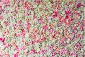 Blumenwand rosa weiß